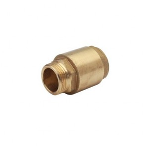 DAB Dab-Nrv25Fm - Pump Non Return Check Valve 1 Inch Bronze F/M